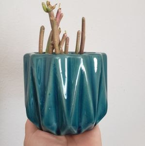 Modern blue/green planter/pot